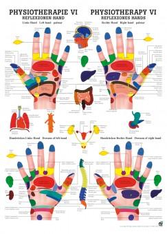 Reflexzonen Hand