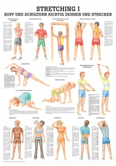 Stretching 1 Poster 24cm x 34cm