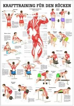 Krafttraining für den Rücken (Lehrtafel 70cm x 100cm)