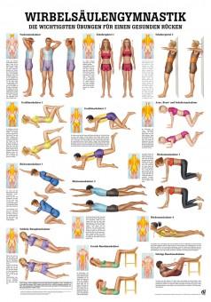 Wirbelsäulengymnastik Poster 24cm x 34cm