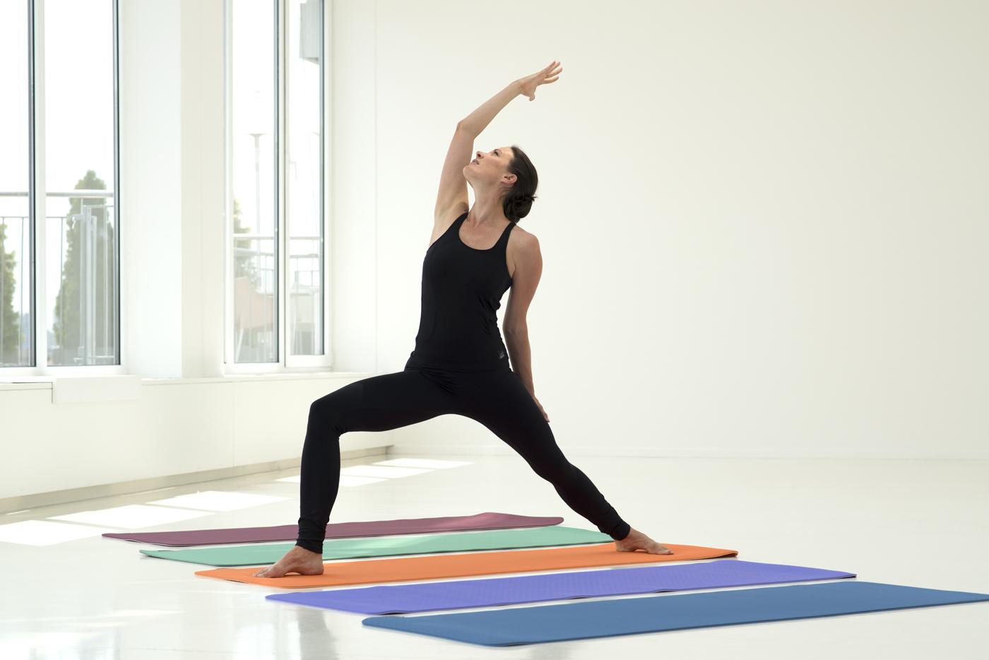 Yogamatte pro
